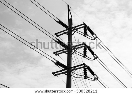 The wires poles.black and white.
