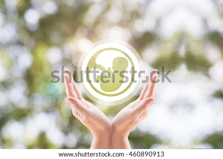 The woman's hands support the human embryo icon on blurred background tree. Stock photo ©