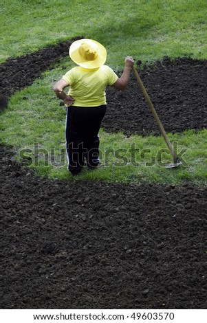 The woman works on a kitchen garden
