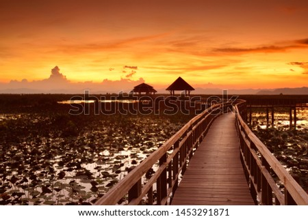 The wooden bridge in the lotus field and twilight sky