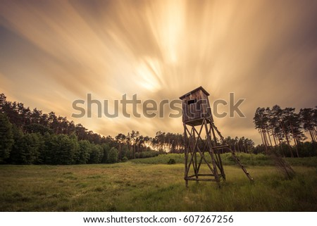 The wooden cabin in the forrest in Bory Tucholskie Zdjęcia stock ©