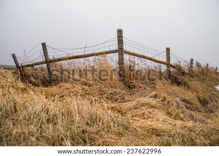 The wooden fence post as the fog starts to lift.