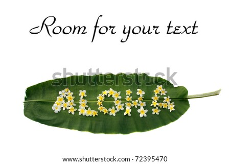 "the word ""ALOHA"" written on a banana leaf out of plumeria flowers isolated on white with room for your text"