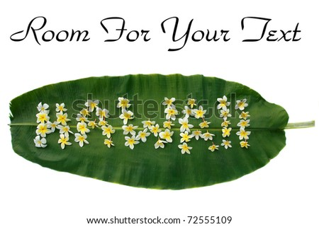 "the word ""HAWAII"" written on a banana leaf out of plumeria flowers isolated on white with room for your text"