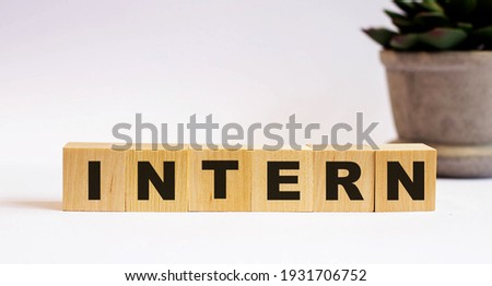 The word INTERN on wooden cubes on a light background near a flower in a pot. Defocus Stockfoto ©