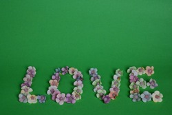 The word LOVE is lined with letters on a clean green background with colorful flowers at the bottom of the frame. Above there is a place for text
