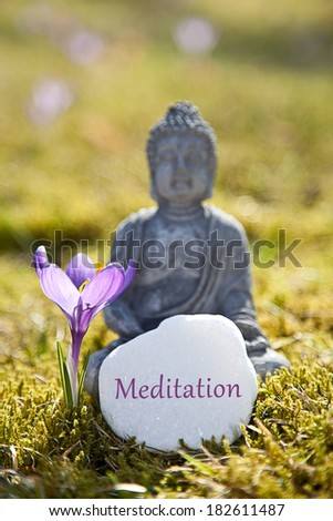 The word Meditation with Buddha Statue