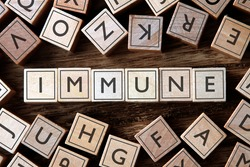 the word of IMMUNE on building blocks concept