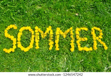 The word summer (in German 'Sommer') made out of flowers on a green meadow #1246547242