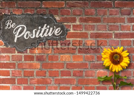 The Words Be Positive Written on a Red Brick Wall with a Sunflower growing in Front of the Wall