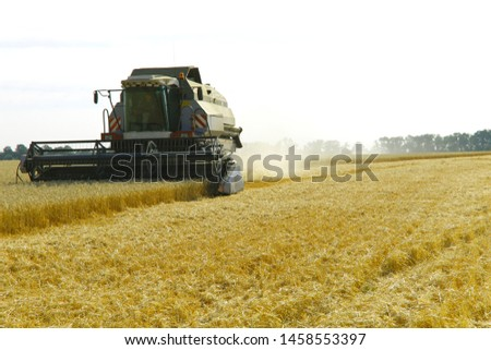 The work of the combine in the field of ripened wheat. Harvesting grain crops. Cropped shot, horizontal, free space, side view. The concept of agriculture and nature. #1458553397