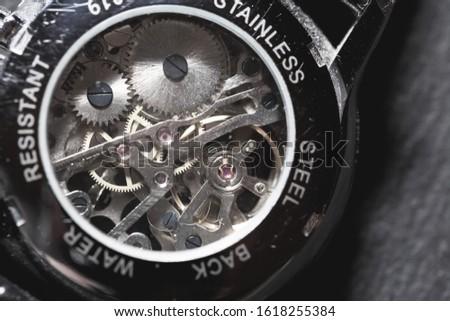 The working mechanism of a mechanical watch macro