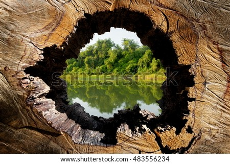 The World Conservation, Conservation, Water Conservation, global warming, holes wood, can be used as a background,Poster campaign against cutting trees, Earth Day, Protect the environment, advertise  #483556234