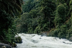 The world famous clear water rapid of Asahan River surrounded by dense rainforest is perfect for kayaking and white water rafting, North Sumatra, Indonesia.