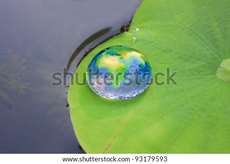 The world in a drop of water on a lotus leaf.