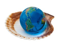 The World is your oyster and life opportunity concept with blue globe with earth map turned to the American continent on a shell isolated on white background with clipping path cutout