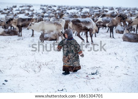 The Yamal Peninsula. Reindeer with a young reindeer herder. Happy boy on reindeer herder pasture playing with a toys in winter.