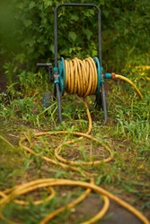 The yellow hose lies on the grass in the garden. Water hose close-up.