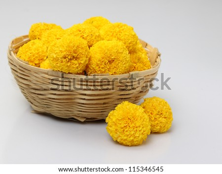 The yellow  marigold in a basket