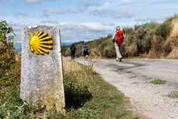 The yellow scallop shell signing the way to santiago de compostela on the st james pilgrimage route