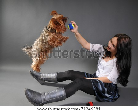 The young beautiful woman  with the yorkshire terrier