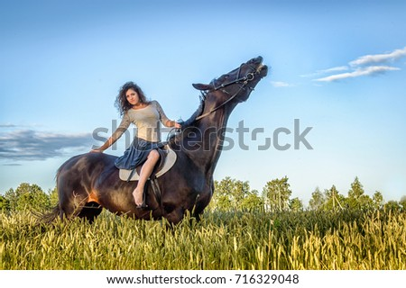 Stock Photo the young girl on a horse in the field