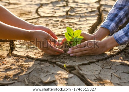 The young man and friends grow small plant seedling together on dry cracked dirt to recovery forest and stop climate change and global warming. Environment conservation and Sustainable life concept. Foto stock ©