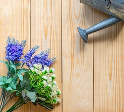 The zinc watering can is Watering water the violet Artificial flowers of Plastic with White plastic flower and an orange board background And there is a copy space