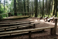 theater in forest