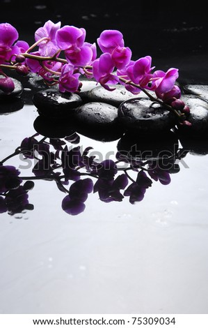 therapy stones with branch pink orchid on pebble reflection - stock photo