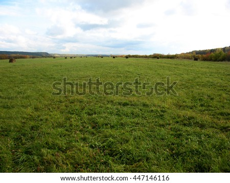 There are haystackes  and field of green grass #447146116