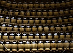 there are many bottles of wine in a wooden fiasco