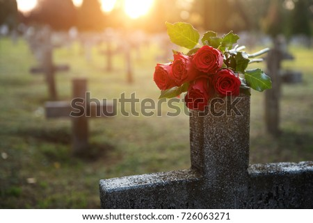 There are plenty of tombstones in the cemetery Foto stock ©