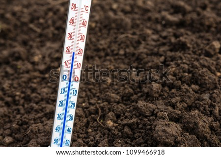 Thermometer for measuring soil temperature for gardening and planting plants against the background of the earth with a copy of the space
