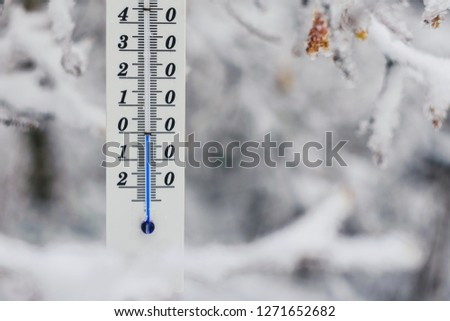 Thermometer on the snow, behind tree showing zero celsius or fahrenheit. Winter time background.