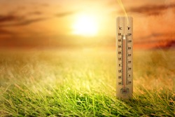 Thermometer with high temperature on the meadow with glowing sun background. Heatwave concept