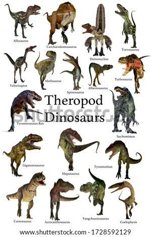 Theropod Dinosaurs 3D illustration - A collection set of Theropod carnivorous dinosaurs from the Cretaceous, Jurassic and Triassic Periods.