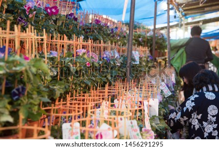 """These  picture for Iriya morning glory market which held in July at Iriya Taitouku Tokyo Japan.Japanese text in tags  says """"Iriya morning glory mrket"""", some registered number."""