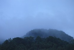 Thick fog covered the mountains of Toraja. Fog is water vapor that is near the ground surface condenses and becomes like a cloud.