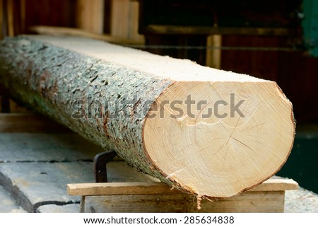 Thick log of timber being sawed into planks. Timber seen from the end with cut made on top.