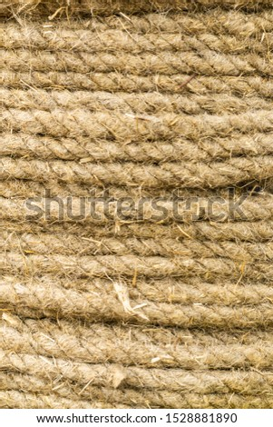 Thick rough flax strands in a bundle