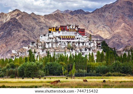 Thikse Gompa or Thikse Monastery (also transliterated from Ladakhi as Tikse, Tiksey or Thiksey) - Tibetan Buddhist monastery of the Yellow Hat (Gelugpa) sect. Ladakh, Jammu and Kashmir, India - Shutterstock ID 744715432