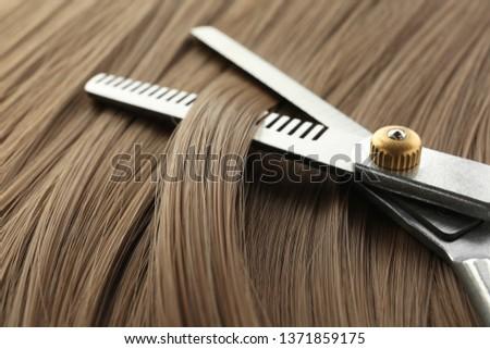 Thinning scissors on light brown hair, closeup. Hairdresser service