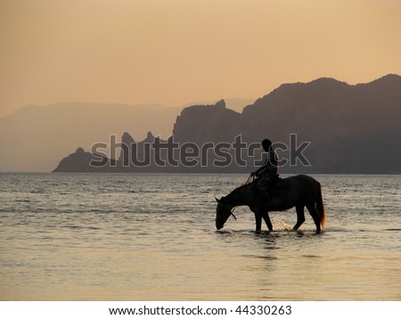 Thirsty horse. Horseman in the sea. Horse drinks in the evening. - stock photo