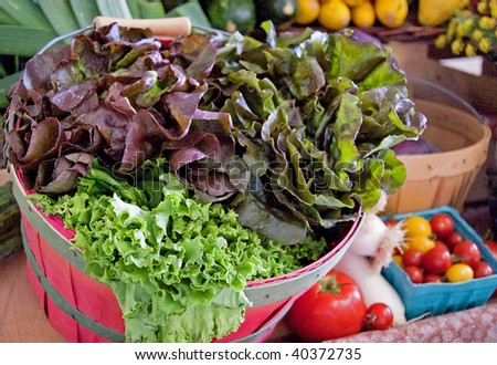 This basket of fresh organic lettuce is set with many other vegetables in the background of this photo.