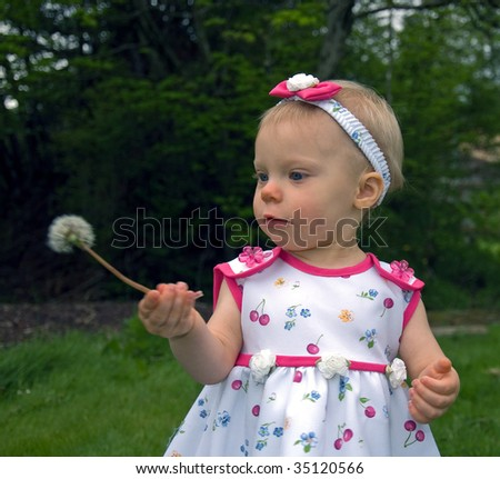 This cute little 1 year old girl is looking at a dandelion seed head she's never seen before. - stock photo