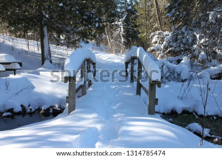 This cute wooden bridge is covered in snow and so is the picnic table just across the stream. Unfrozen water still flows beneath. Beautiful evergreens frame the scene. Pretence Park, Ashland, Wis. #1314785474