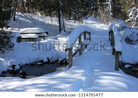 This cute wooden bridge is covered in snow and so is the picnic table just across the stream. Unfrozen water still flows beneath. Beautiful evergreens frame the scene. Pretence Park, Ashland, Wis. #1314785477