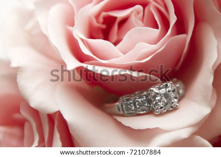 This image contains a diamond ring nestled within a pink / red flower. Great image promoting love, marriage, engagement, luxury, jewelry, etc.