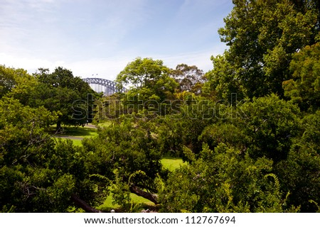 This image shows a vista within the Royal Botanical Gardens - Sydney, Australia